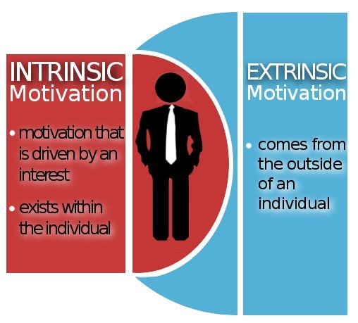 motivation intrinsic vs extrinsic essay